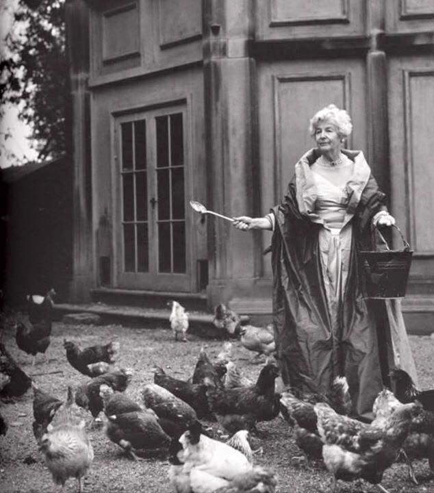 The chicken lady